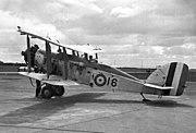 RoseWapiti1FTS1938