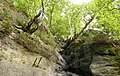 Rotkehlchenstiege - Elbsandsteingebirge - panoramio (8).jpg