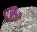 Rubis, phlogopite, calcite 4.JPG