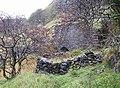 Ruined limekiln - geograph.org.uk - 605522.jpg