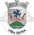 SNT-mirasintra.png