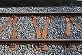 SOB - Y-steel sleeper (29509780563).jpg