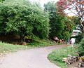 SRI PRASANNA VENKATRAMANA SWANY TEMPLE, Chinnathirupathi, Karuvalli, Salem - panoramio (32).jpg