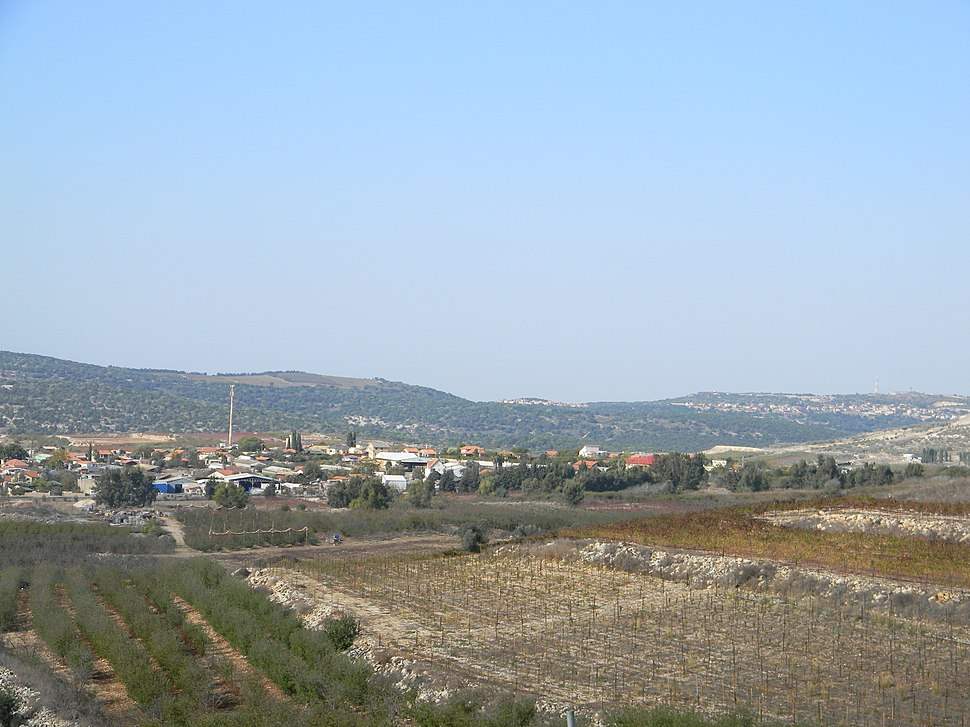 Safsufa (1)