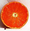 Saft-Clementine, Spanien, Supermarkt1662.JPG