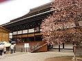 Sakon no Sakura and the Shishinden.jpg