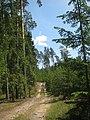 Salako sen., Lithuania - panoramio (217).jpg