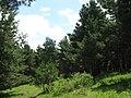 Samtskhe-Javakheti, Georgia - panoramio (7).jpg