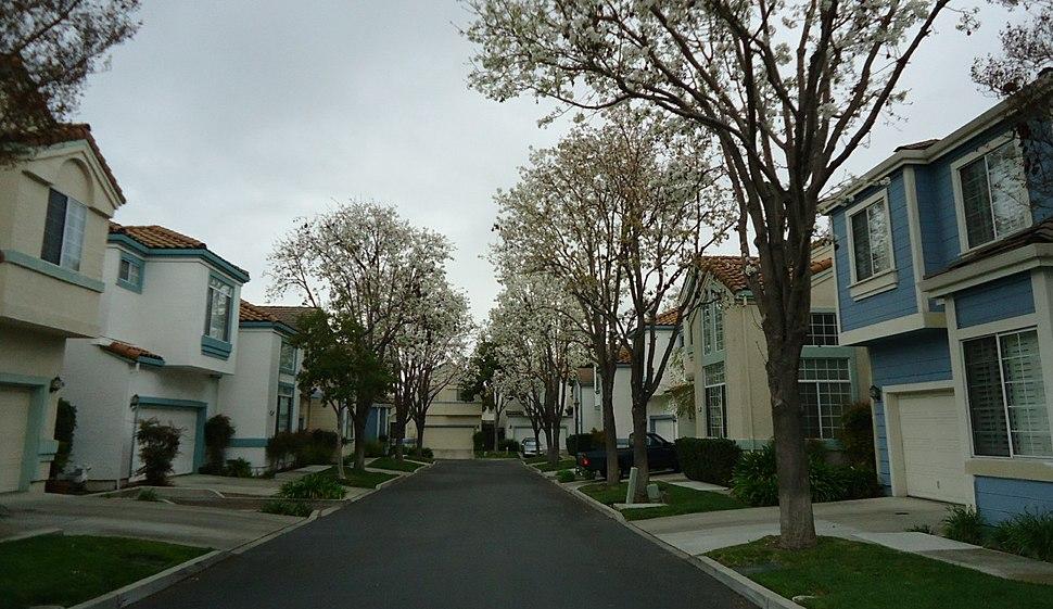 Santa Clara California Dwellings