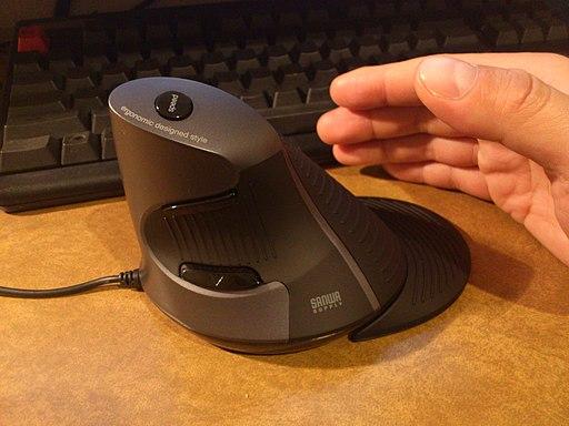 Sanwa Supply Ergonomic designed style Mouse (8659823169)