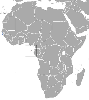 São Tomé shrew species of mammal