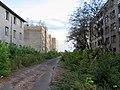 Sarmellek. Центральная аллея. Фото Виктора Белоусова. - panoramio.jpg