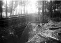 Schanzen im Wald des Werkes Wylerholz - CH-BAR - 3241756.tif