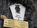 Schild an Feldulme, Nähe Schmellwitzer Straße 80, Cottbus.JPG