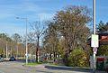 Schlossallee & Auer-Welsbach-Park.jpg