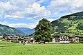 Schwendau - ND 9 19 - Lindenbaumgruppe - I.jpg