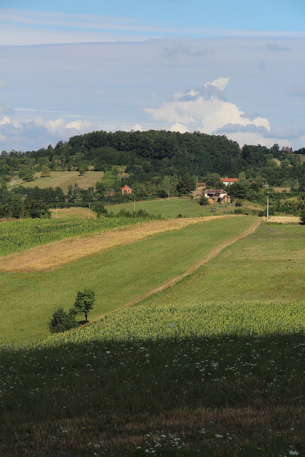 Selo Valjevska Kamenica - opština Valjevo - zapadna Srbija - panorama 2