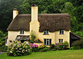 Selworthy cottage.jpg