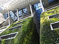 Seoul City Hall green wall 4.JPG