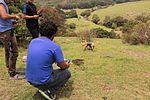 Serie de fotografías con Drone en Tepotzotlán-Arcos del Sitio 10.jpg