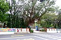 Shuangxi Elementary School Gate 2018.jpg