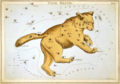 Sidney Hall - Urania's Mirror - Ursa Major.png