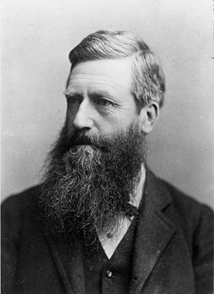 New Zealand general election, 1890 - Image: Sir Harry Albert Atkinson, ca 1885