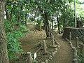Site of Setagaya Castle Park (世田谷城址公園) - panoramio.jpg