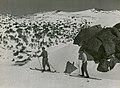 Skiers above The Chalet, Kosciuszko (NSW) (6848885993).jpg