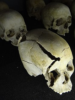 Skulls of genocide victims Image: Adam Jones.