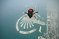 Skydiving over Palm Jumeirah.jpg