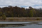 Slate Run-Wetlands in Fall 1.jpg
