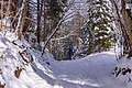Slovenia (20 of 29) (26136023237).jpg