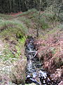 Small waterfall in the Goyt Forest - geograph.org.uk - 1780713.jpg