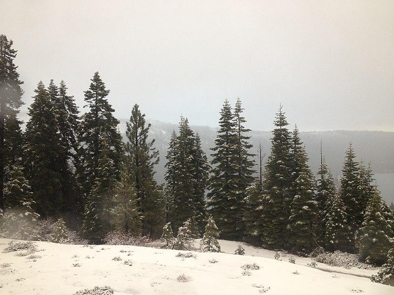 Época de neve na Califórnia