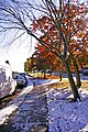 Snowy autumn, London N14 - geograph.org.uk - 1028870.jpg