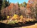 Sommerlicher Herbst Herrenstuhl - panoramio (28).jpg