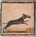 Sousse mosaic dog.JPG