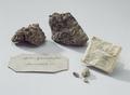 Souvenirer, stenar med konvolut, Schwedenstein - Livrustkammaren - 82354.tif