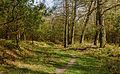 Spannend pad door wildgebied. Locatie, Kroondomein.jpg