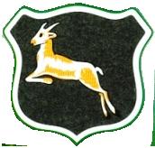 Springboks logo first