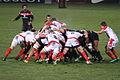 Stade toulousain VS Biarritz 01 2013 (25).JPG