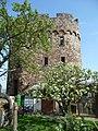 Stadtmauer Neuleiningen- 14.JPG