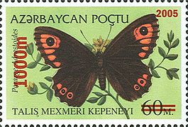 Stamps of Azerbaijan, 2005-692.jpg