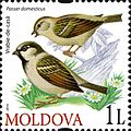 Stamps of Moldova, 2010-16.jpg