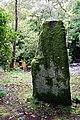 Standing Stone - geograph.org.uk - 557891.jpg