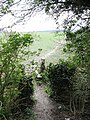 Stile and Field Path at Halton - geograph.org.uk - 1230965.jpg