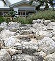 Stone steps 2, Lucaya Beach, Freeport, Bahamas.jpg
