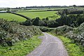 Stoodleigh, near West Whitnole - geograph.org.uk - 243659.jpg