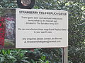 Strawberry Field, Liverpool, England (2).JPG
